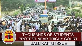 Jallikattu Issue : Thousands of Students protest near Trichy Court | Thanthi TV