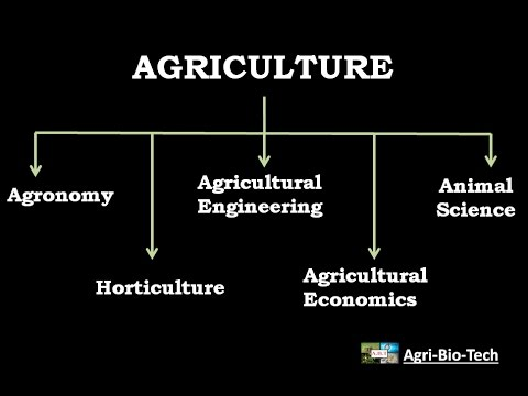 importance and branches of agriculture
