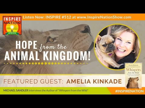 🌟 AMELIA KINKADE: What Animals Are Trying to Teach Us  Whispers from the Wild  Animal Psychic
