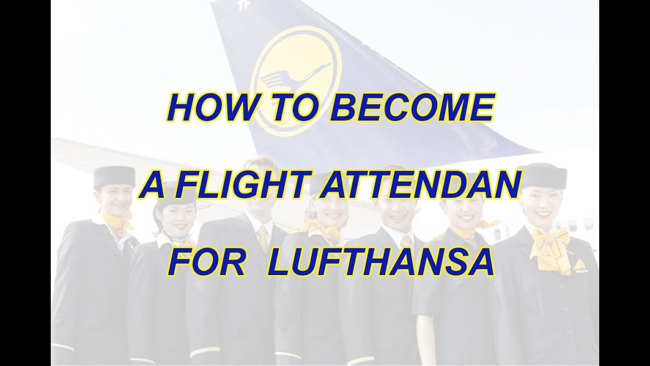 how to become a flight attendant for lufthansa how to become a flight attendant for lufthansa