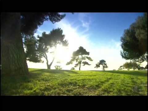 2014 FARMERS INSURANCE OPEN: CBS RE-TEASE (MARK GLEASON)