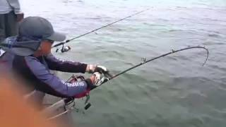 Mancing Ikan Jenahak Terbesar