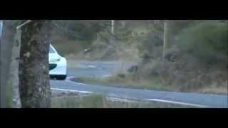 Peugeot 207 S2000 Evo 2012 HD