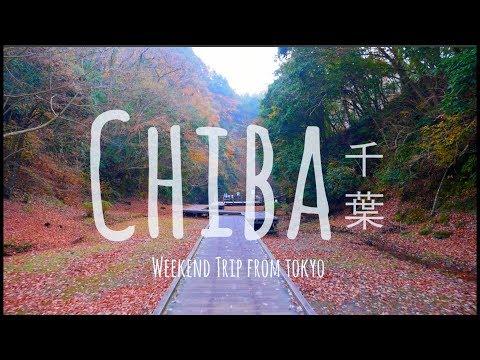 CHIBA, JAPAN // 千葉 (Weekend trip from Tokyo)