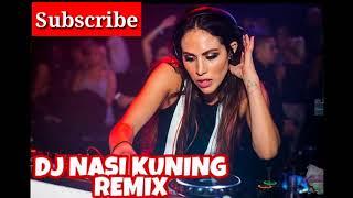 DJ NASI KUNING REMIX   ASIK DI GOYANG   DJ INDONESIA