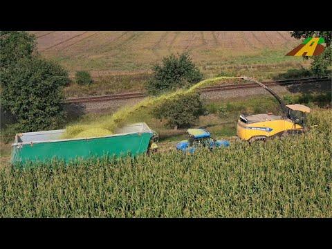 Maishäckseln - Feldhäcksler New Holland FR 700 Trecker T8 & T7 German farmer corn harvest Maisernte
