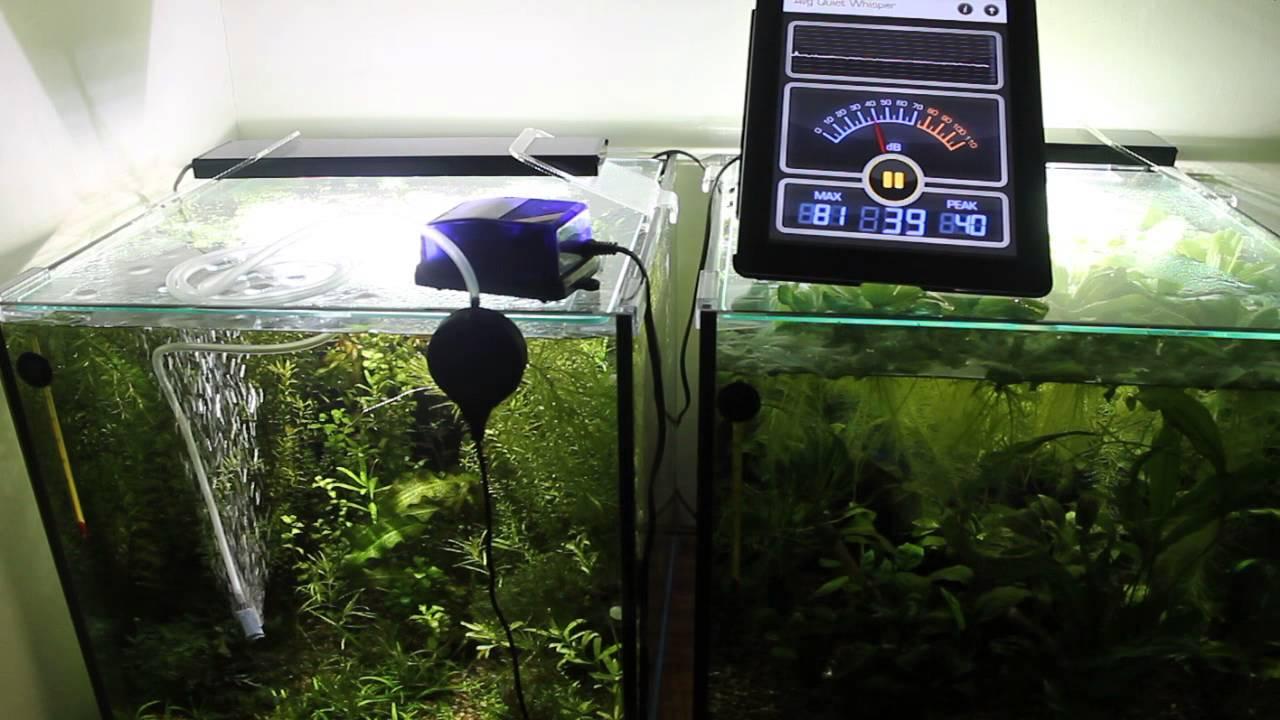 как правильно поставить в аквариум компрессор фото обладают высокой
