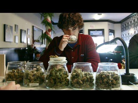 Legal Weed KILLING Drug Cartels
