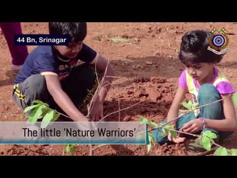 अखिल भारतीय वृक्षारोपण