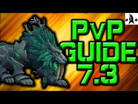 FERAL PvP GUIDE! (7.3) Talents, Rotation, Macros + More