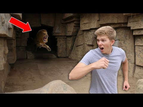 Exploring Secret Abandoned Zoo (NOT SAFE)