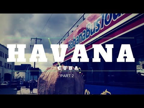 COCONUTS AND TOUR BUSES IN HAVANA