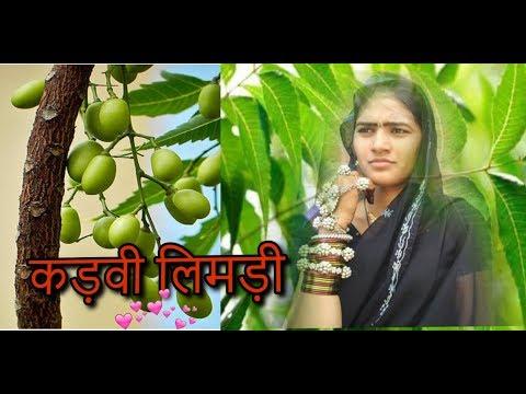 कड़वी लिमड़ी  DJ Timli Song MP Adivasi Music  Ft Jhankar DJ