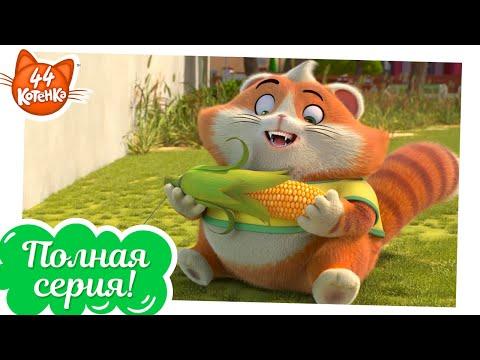 44 Котёнка | Ловушки [ПОЛНАЯ СЕРИЯ]