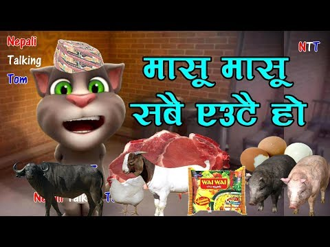Nepali Talking Tom - Masu Masu Sabai Eutai Ho - Talking Tom Nepali Comedy Video