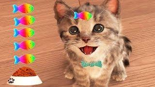 Game Anak Kucing Lucu Banget deh Mainan anak perempuan
