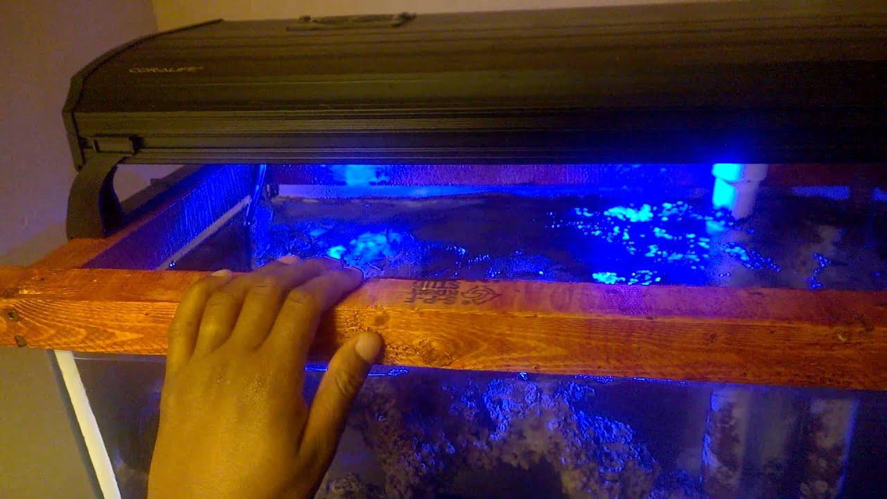 55 gallon long reef tank with custom wood brace