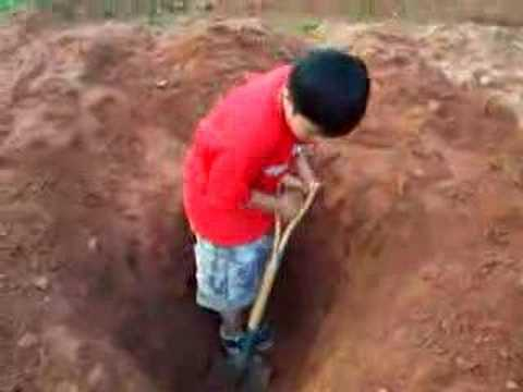 how to decide where to dig a well