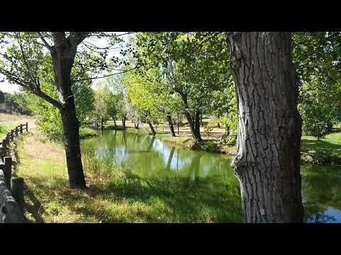 Gavião | À Descoberta do Parque da Ribeira da Venda, Comenda
