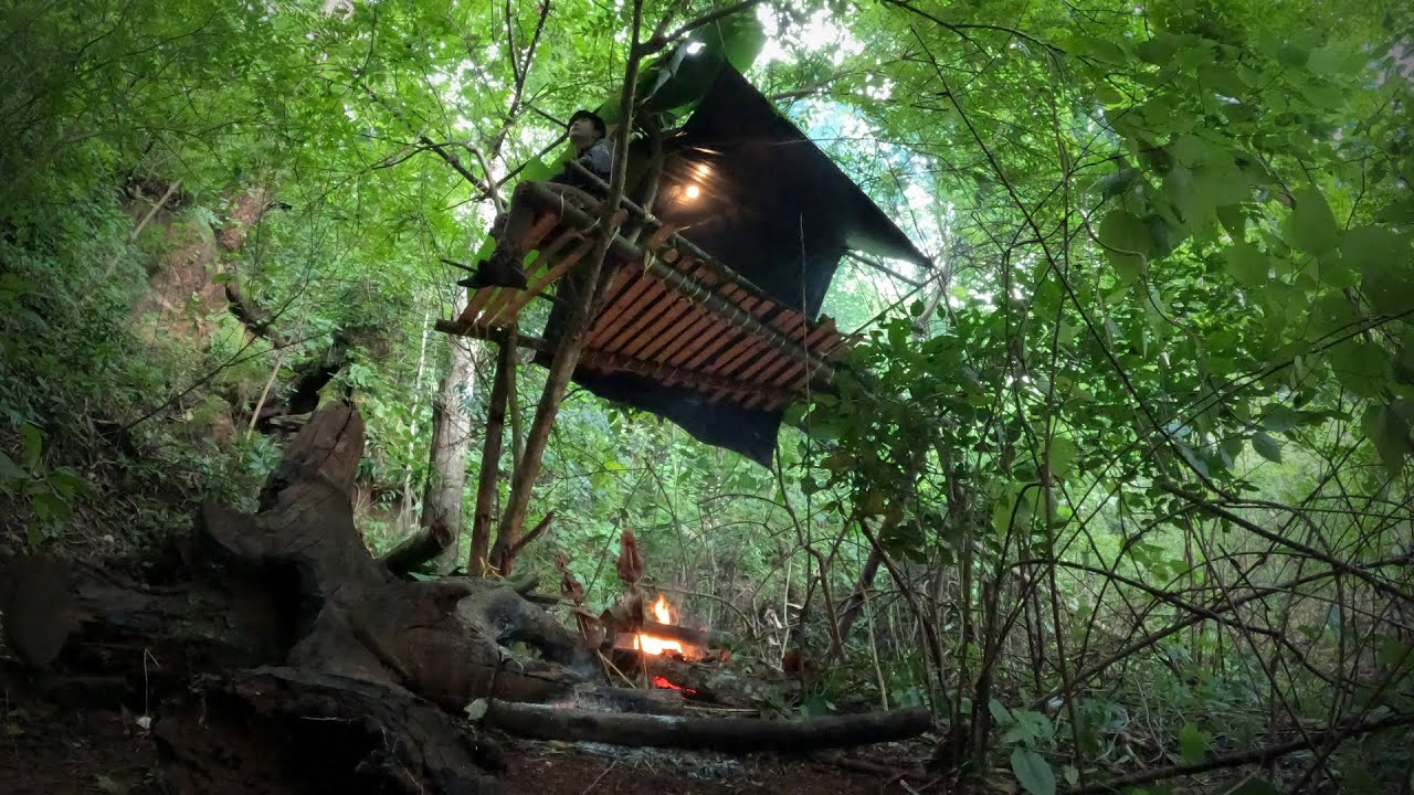 นอนป่า1วัน1คืน สร้างที่พักบนต้นไม้ หาของป่ามาทำอาหาร หน้าฝนที่พักต้องยกสูงเท่านั้น!