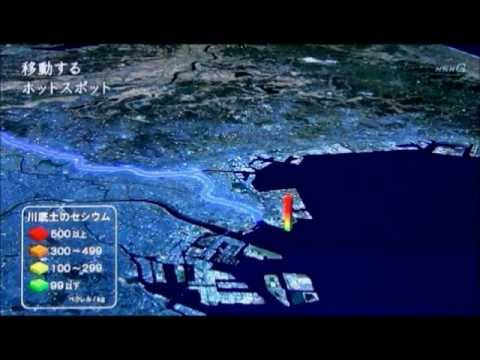 Tokyo Bay Contamination More Serious than Fukushima Offing.