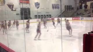 Rhythm and Blades Novice, Ice Hawks 1/17/2015