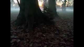george adams+don pullen Quartet- autumn song