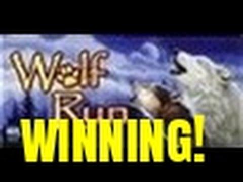 WINNING AT WOLF RUN SLOT MACHINE-BONUS