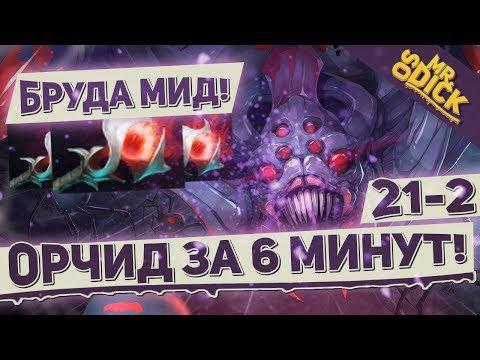 видео: МИДОВАЯ БРУДА - ИМБА! ОРЧИД ЗА 6 МИНУТ!   broodmother dota 2