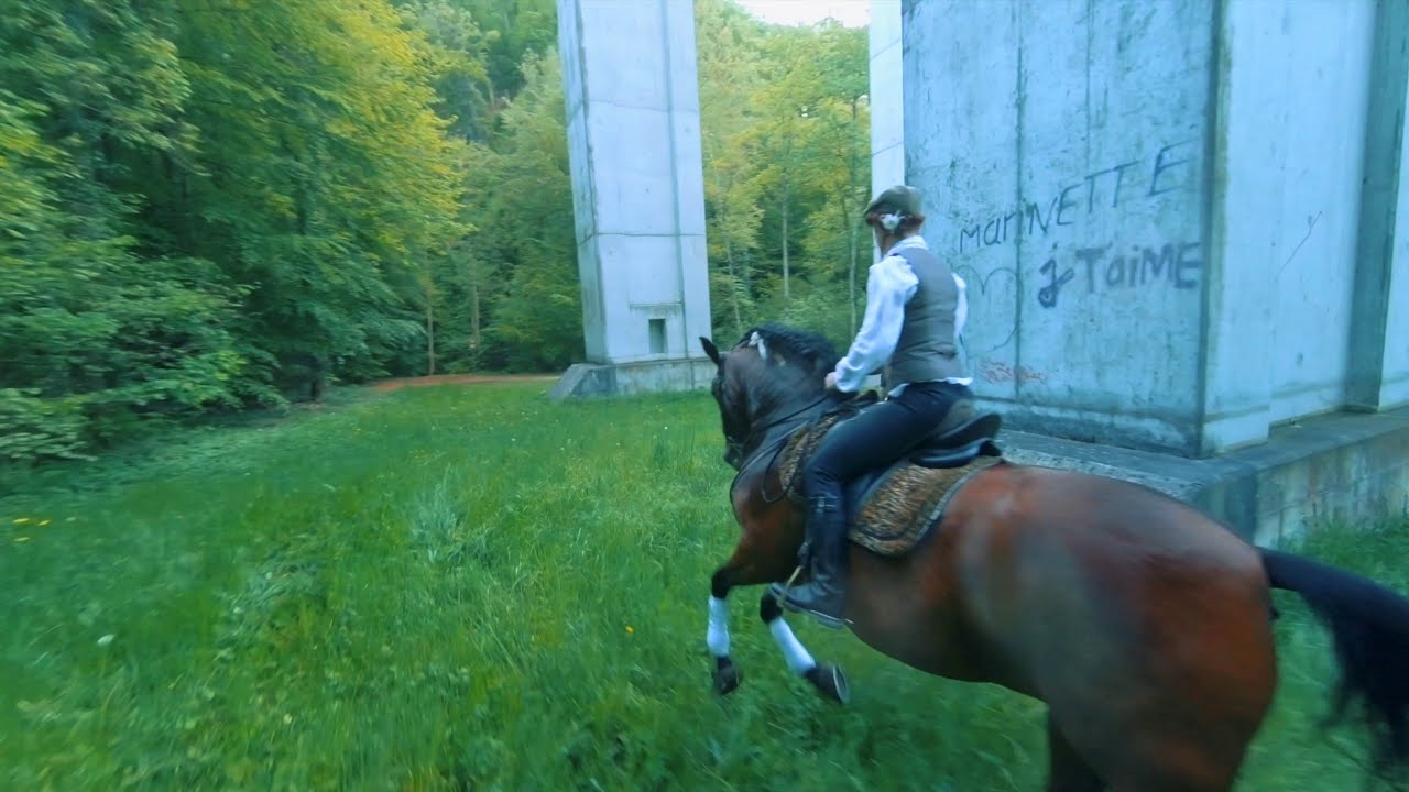 FPV vs Horse фотки