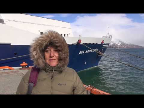 Arctic Expedition. Kayaking with polar bears, reindeer, walrus, puffins and more!