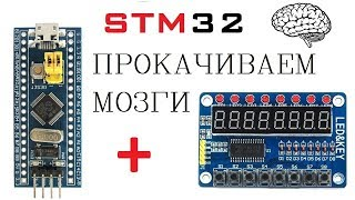 STM32 и TM1638  простая игра