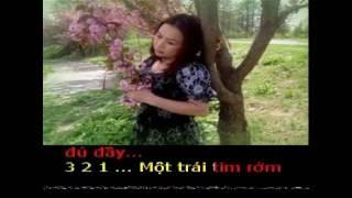 LIÊN KHÚC : BÊN ĐỜI và KHÚC  YÊU THƯƠNG Karaoke