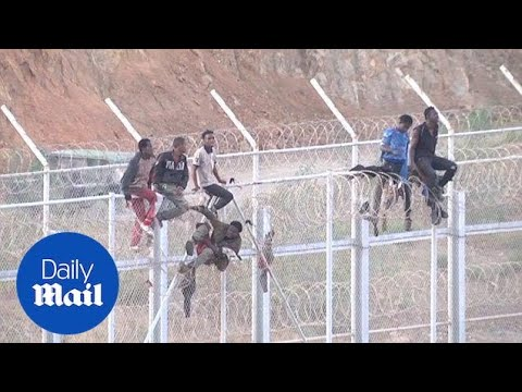 600 migrants reach Spain after storming border fence in Ceuta - Daily Mail