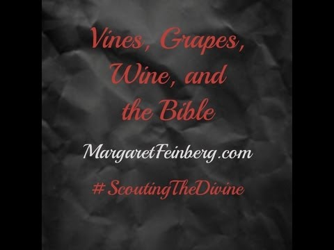 Vines, Grapes, Wine, and the Bible