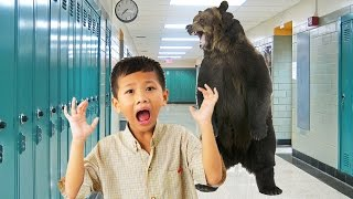 Trump's Education Secretary: Bears Are Threatening Our Schools