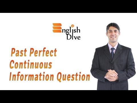 Past Perfect Continuous Information Question