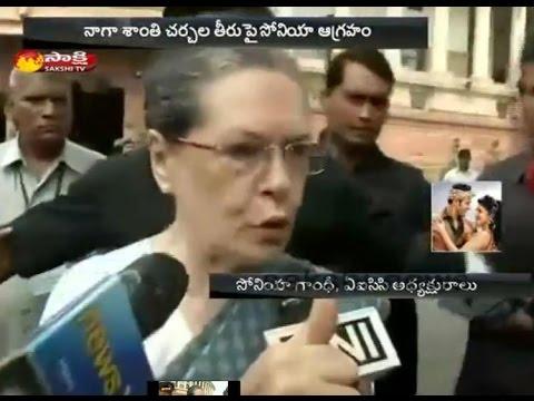 We Dont Agree Naga Pact: Sonia Gandhi