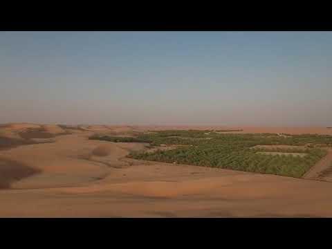 United Arab Emirates, Liwa Oasis