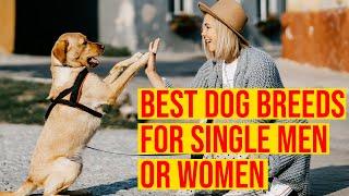 10 Best Dog Breeds For Single Men Or Women