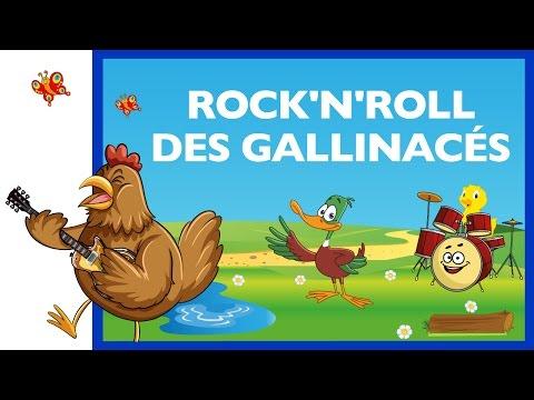 Rock'n'roll des gallinacés Comptine HD