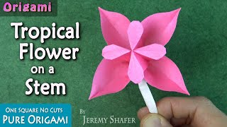 Origami Tropical Flower on a Stem