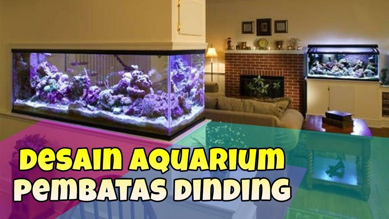 Desain Aquarium Cantik Untuk Pembatas Ruangan Youtube