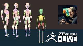 Shane Olson - Stylized Anatomy - Episode 1