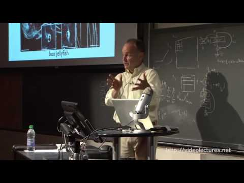 Beyond inspiration Five lessons from biology on building intelligent machines Bruno Olshausen
