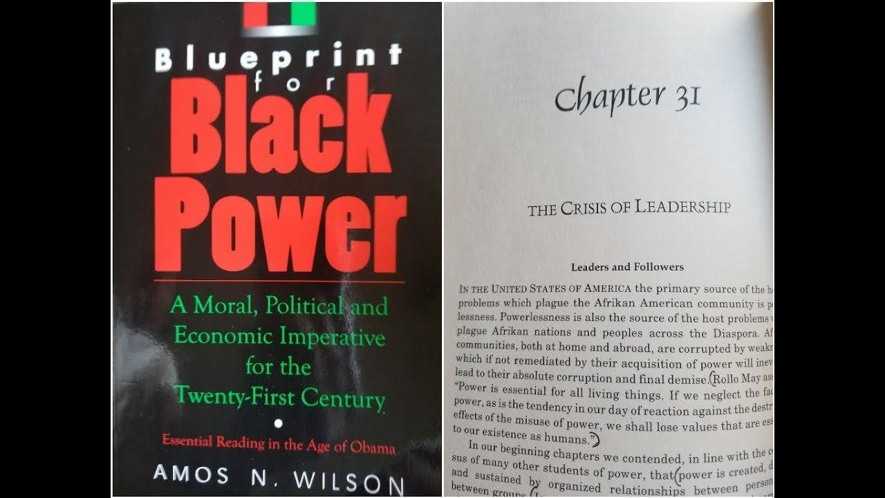 Dr. Amos Wilson, Blueprint For Black Power Chapter 31 - RAM Bookclub