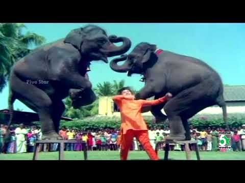 Odi Odi Uzhaikkum Song | Nalla Neram Movie | MGR