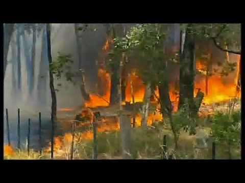 The 2009 Black Saturday Bushfires (Australia) - YouTube