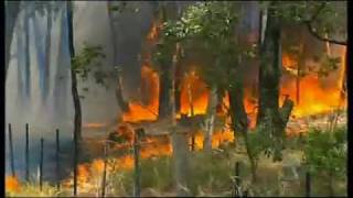 The 2009 Black Saturday Bushfires (Australia)