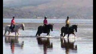 Horse Riding Argyll Adventure Inveraray